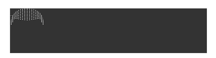 primary retina logo